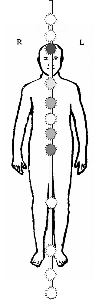 Pranaröhre