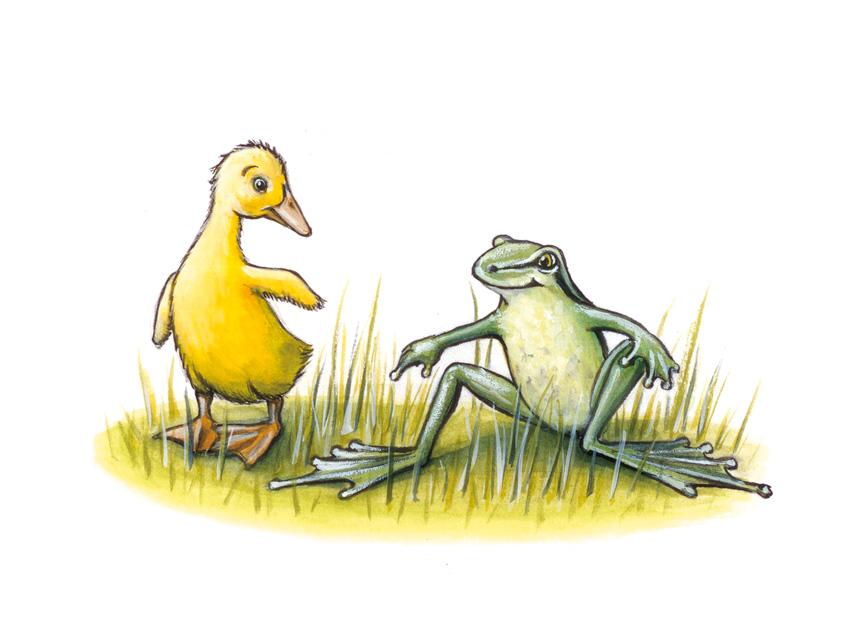Willy und Herr Frosch