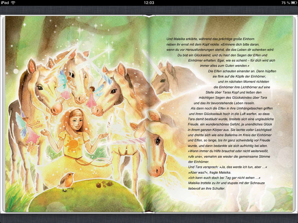 Ansicht 2 der eBook-Version (Tablet und PDF)
