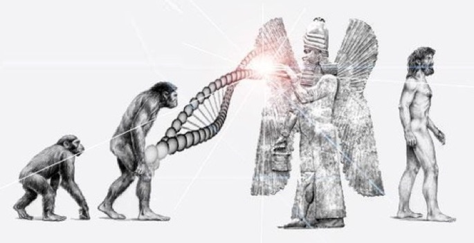 Die wahre Evolution der Menschheit ...
